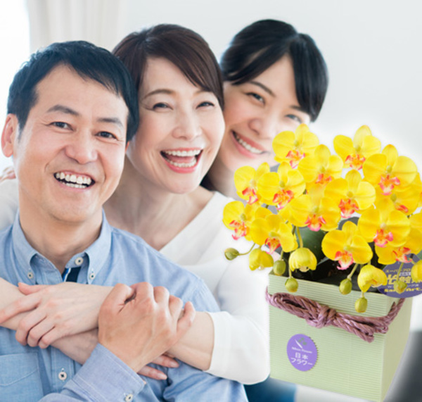 今年の父の日は、6月第三日曜日、6月16日です。父の日の胡蝶蘭の御予約を、承っております。