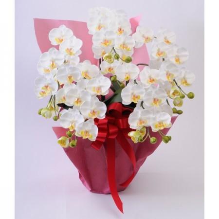 光触媒(造花) 5本立胡蝶蘭 白
