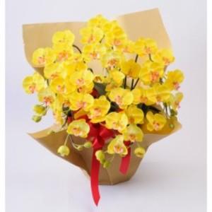 光触媒(造花) 5本立胡蝶蘭 黄色